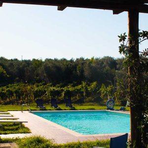 Gallery-Casa-Magi_pool-vinyard